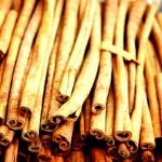 cinnamon_sticks_cortex_tree_stuff_high_contrast_hd-wallpaper-392195